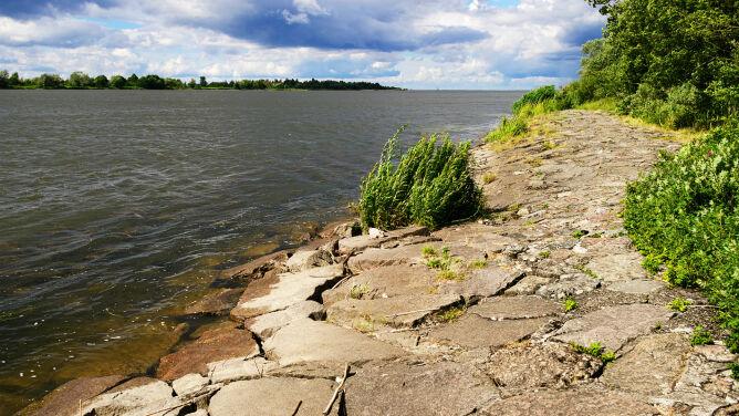 Wysoki poziom wody w Wiśle. Drugi stopień zagrożenia na Pomorzu