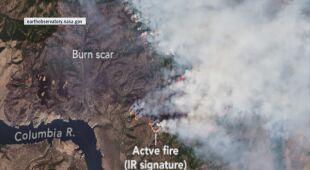 Pyrocumulonimbusy to chmury powstałe w wyniku pożarów